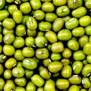→ sauce aux fèves mungcassées