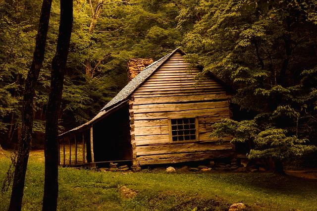 témoignage : 40 ans seul dans les bois à collecter desdonnées