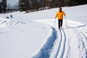 cross-country-skiing-624253_640