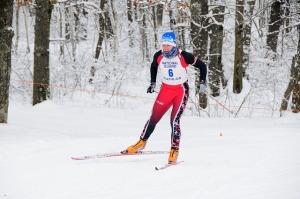 skier-659928_640