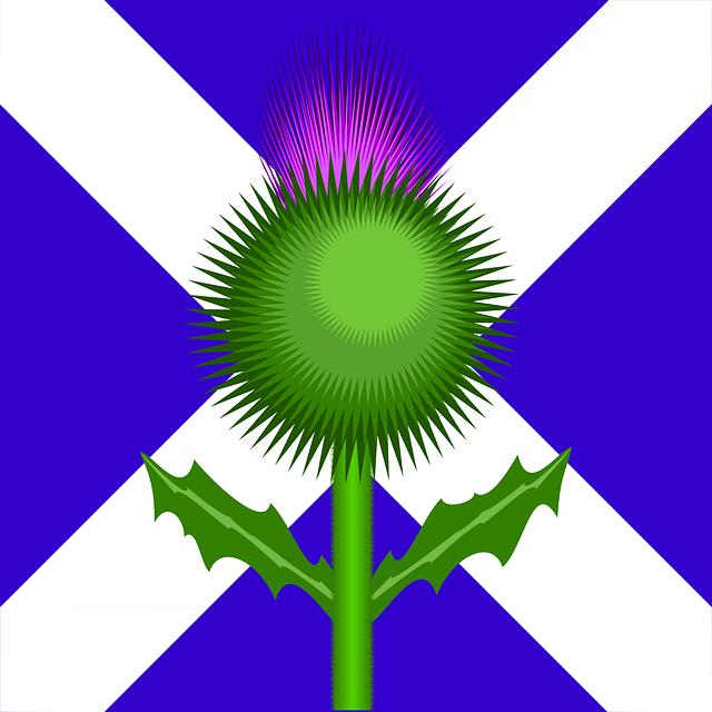 camping : les meilleurs sites de camping d'Écosse 2ièmepartie