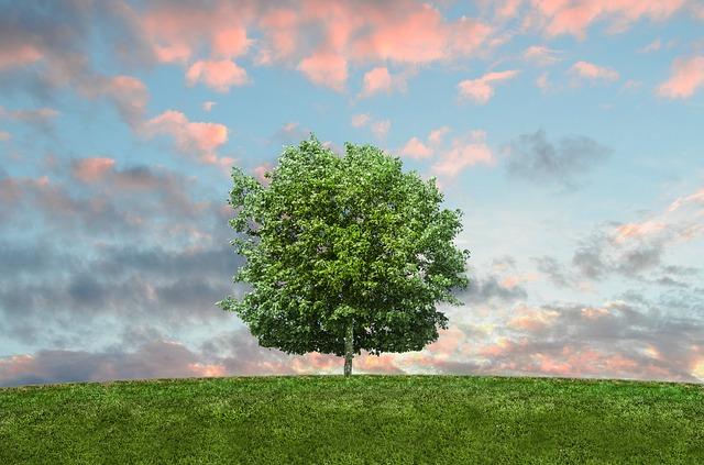 méli-mélo : un petit geste pour l'environnement